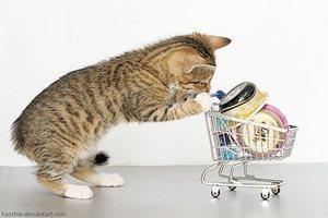 shopping-catblog