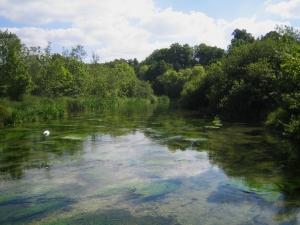 River_Itchen_Ovington