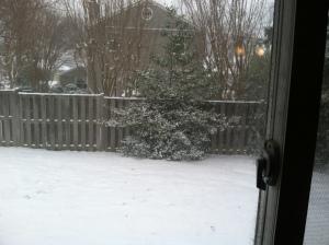 SnowfromIzzysWindowFeb2014