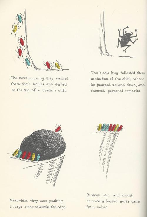 bigblackbug