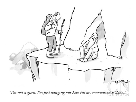 robert-leighton-i-m-not-a-guru-i-m-just-hanging-out-here-till-my-renovation-is-done-new-yorker-cartoon